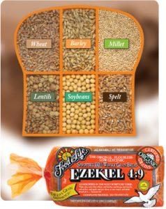 Ezekiel49
